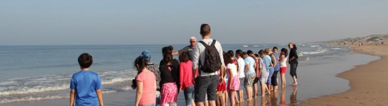 IVN - Strandexcursie Zuidpier IJmuiden
