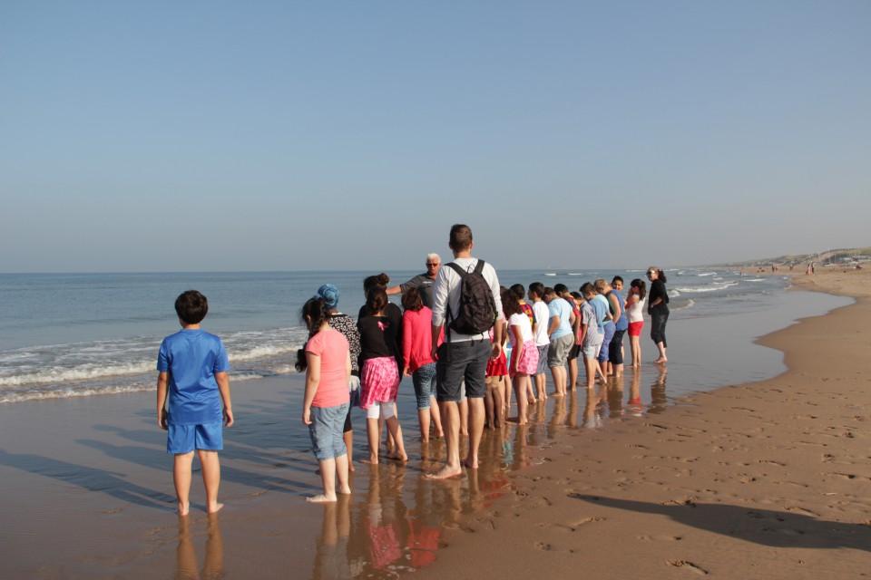 Foto van IVN - Strandexcursie Zuidpier IJmuiden