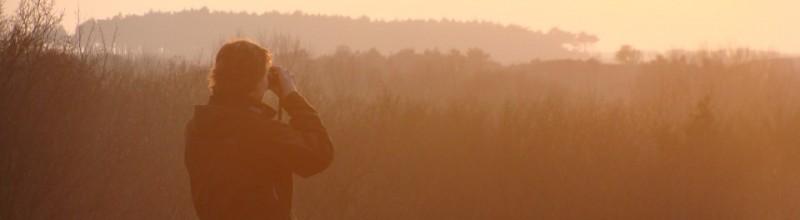 Beter kiezen: coaching in het bos