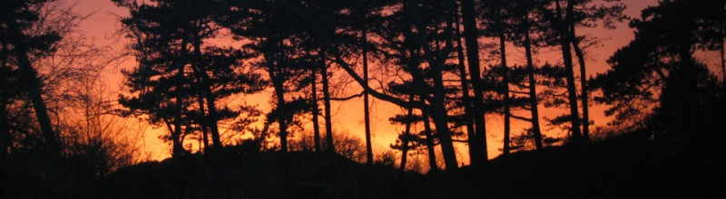 Midzomernachtloop Natuurmonumenten