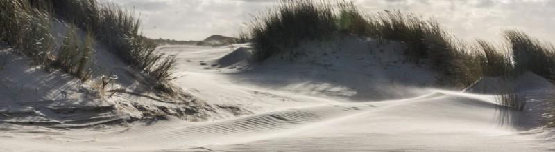 Struinen door stuivende duinen