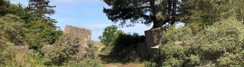 GEANNULEERD Fietsexcursie 'Duinen vertellen oorlogsverhalen' (zuidelijke route)